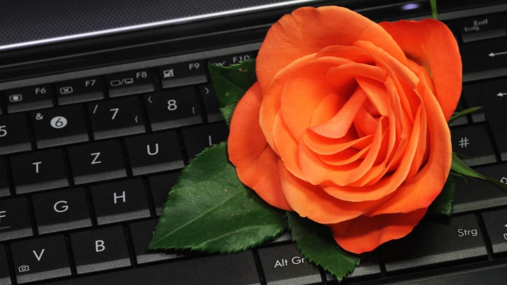 Männliche prominente auf online-dating-sites