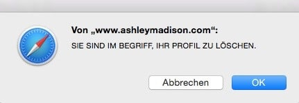 Ashley Madison 7